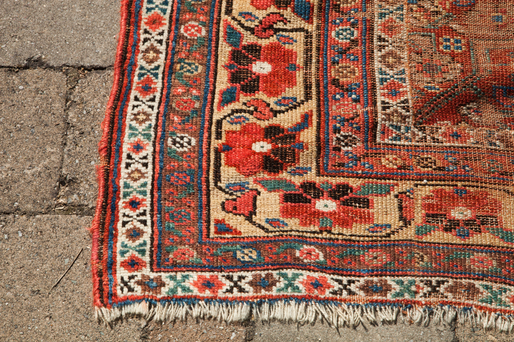 1779-antique-kurdish-area-rug-3