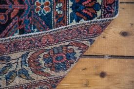 Blue Persian Enjelas