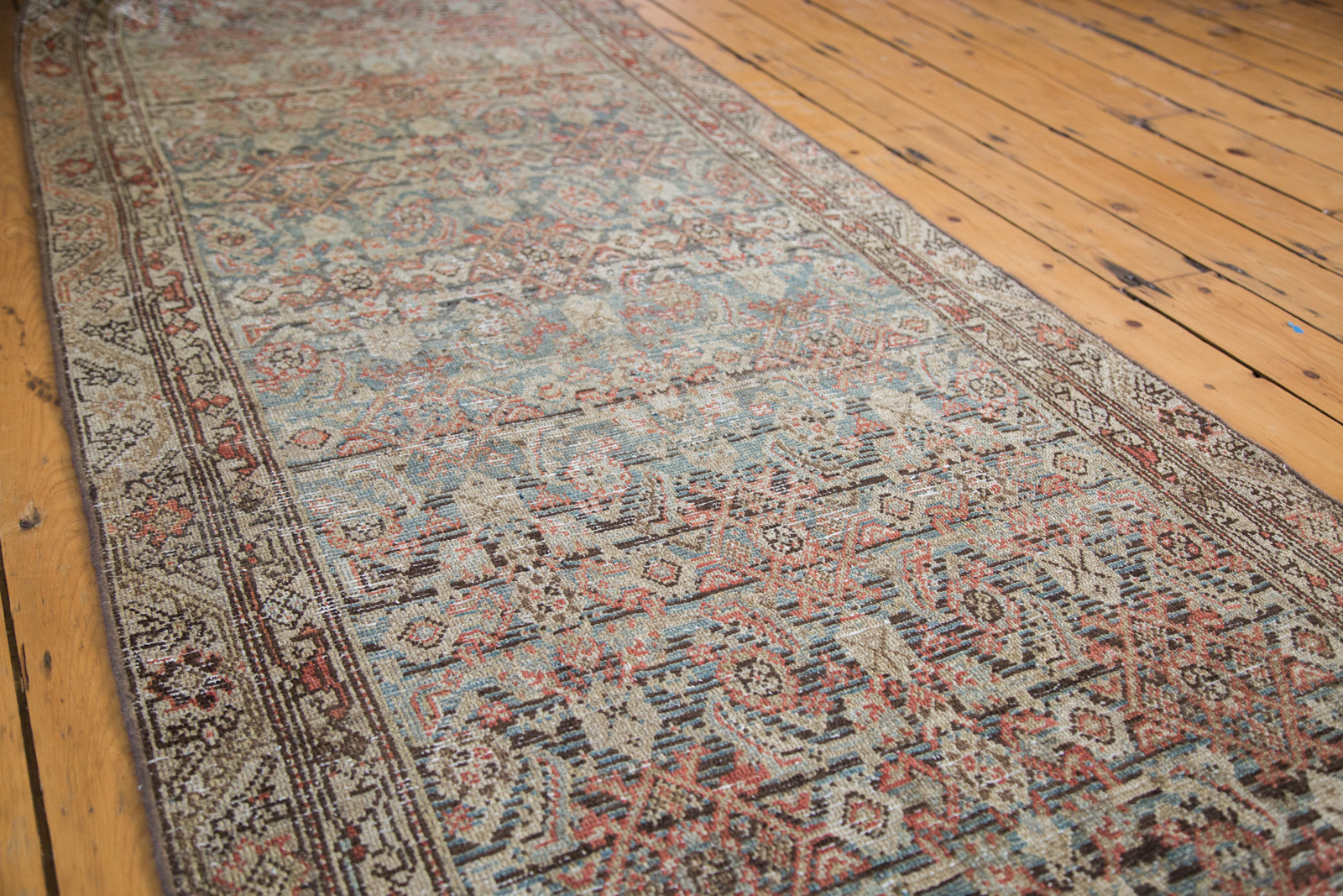 Persian Malayer Runner